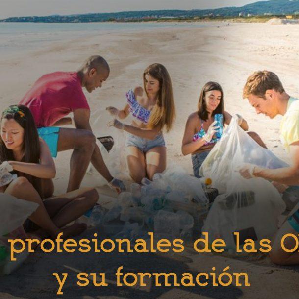 Formación profesionales ONGs